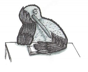 Gute-Nacht-Kiwi 1