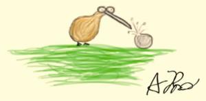Kiwi by Andi