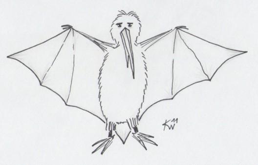 Flederkiwi