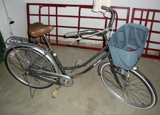 Max's Fahrrad