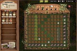 Anpflanzen, gießen & ernten