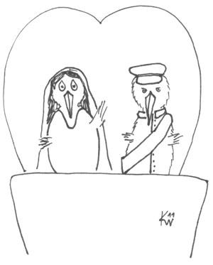 Wedding-Kiwi