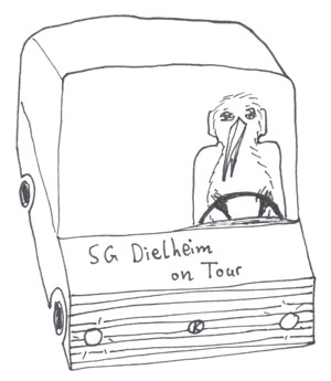 Busfahrer-Kiwi