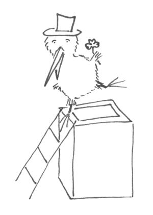 Schornsteinkiwi
