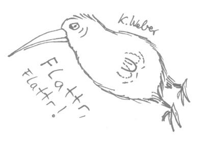 Flattr-Kiwi