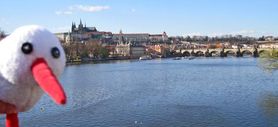 KiTo: Prag, Karlsbrücke und Moldau