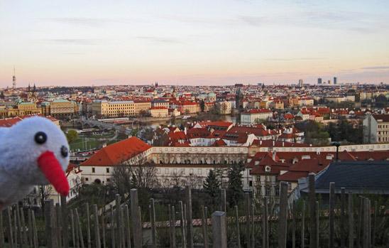 KiTo: Prag
